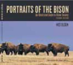 portraits-of-the-bison