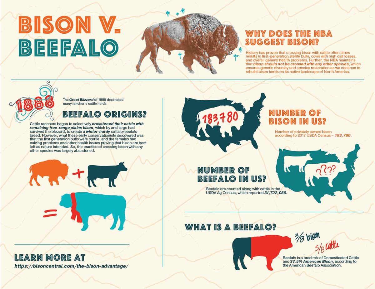 Bison-v-Beefalo